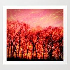 Morning Sun Art Print