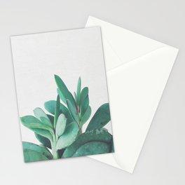 Crassula Stationery Cards