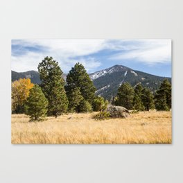 San Fransisco Peaks in Fall Canvas Print