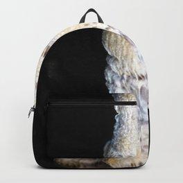 Watercolor Rock, Lechuguilla Cave 21, New Mexico, Dark Totem Backpack