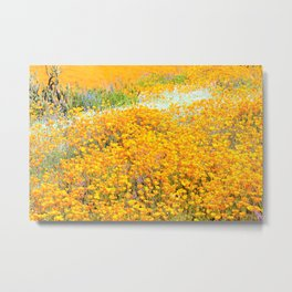 Superbloom of California Poppies by Reay of Light Metal Print