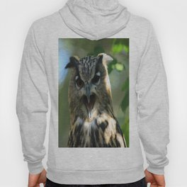 Speech of the owl Hoody