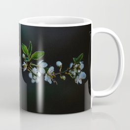 Spring blossoms   Skane. Sweden.  Coffee Mug
