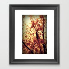 Burst Into Light Framed Art Print