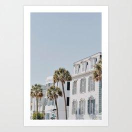 White Palms Art Print