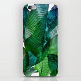 Palm leaf jungle Bali banana palm frond greens iPhone Skin