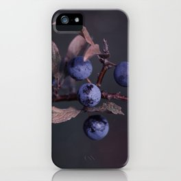 Purple Autumn Berries close up iPhone Case