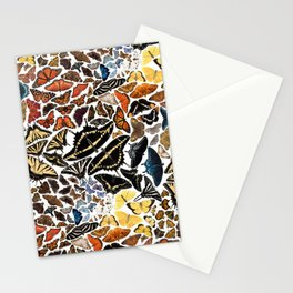 Butterflies of North America Pattern Stationery Cards