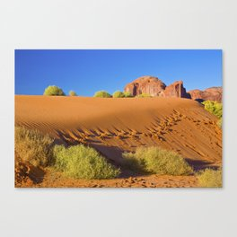 Sunrise on the Dunes Canvas Print
