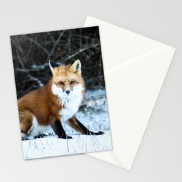 One Fox Stationery Cards