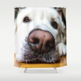 Dog by Enric Moreu Shower Curtain