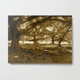Sri Lankan Orchard Metal Print