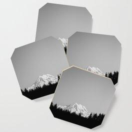 Mt. Rainier Coaster