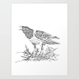 African Crow - Ria Loader Art Print