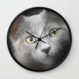 Russian Blue Kitten Portrait 3 Wall Clock