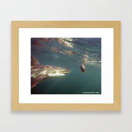 Great White Snack Framed Art Print