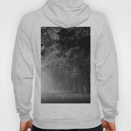 MORNING MIST Hoody