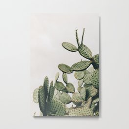 Cactus on blue sky #society6 #decor #buyart Metal Print