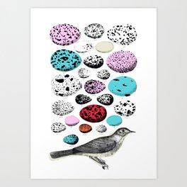Vintage Bird and Eggs Art Print