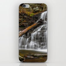Ricketts Glen State Park Pennsylvania Waterfall iPhone & iPod Skin