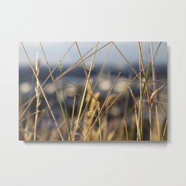 It's a grass life Metal Print