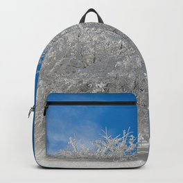 ice sculptures Backpack