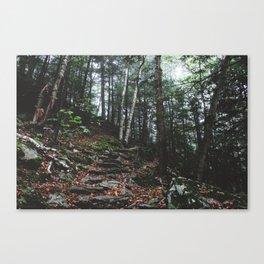 Stevens Glen XI Canvas Print