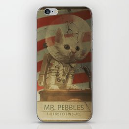 Fallout ADS Poster iPhone Skin