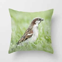 Food? Where? Throw Pillow