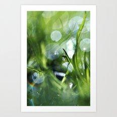 Morning Magic Art Print
