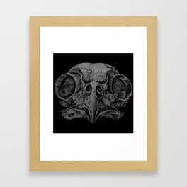 Barred Owl Skull Framed Art Print
