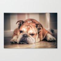 english bulldog Canvas Prints featuring English Bulldog by Hello Tokyo Go Go