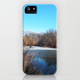 Winter in Central Park, NYC iPhone Case