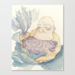 Cabbage Saviour Canvas Print