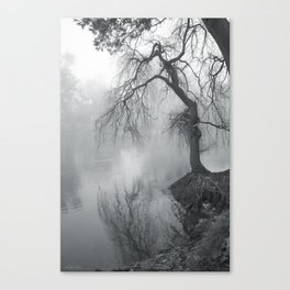 Bent with Gentleness and Time Canvas Print