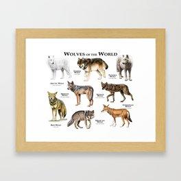 Wolves of the World Framed Art Print