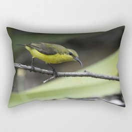 Olive-Backed Sunbird Rectangular Pillow