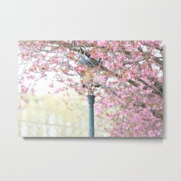 Paris Spring Flowers Metal Print