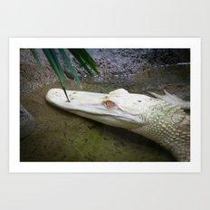 a pretty handsome alligator Art Print
