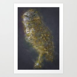 Burrowing Owls Bird Art Print