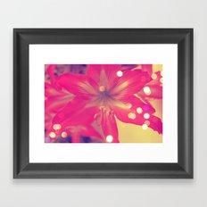 Secret Garden  Pink tigress  Framed Art Print
