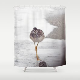 Greater Yellowlegs  Couple Stalk the Cameraman Shower Curtain