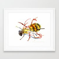 bee Framed Art Prints featuring Bee by Lauren Thawley