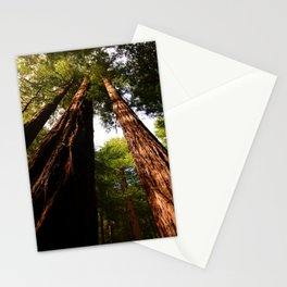 Redwood Tree Tops Stationery Cards
