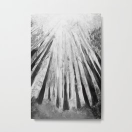 ABSTRACT FOREST, TREES, LIGHT, FOLIAGE Metal Print