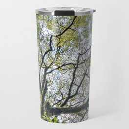 Centenary oak with the trunk covered in moss and green plants Travel Mug
