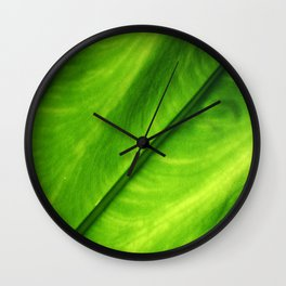 Elephant Ear Wall Clock