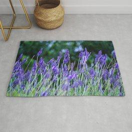Vibrant Lavender Meadow Rug