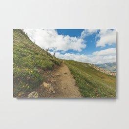 Rocky Mountain Trail Metal Print