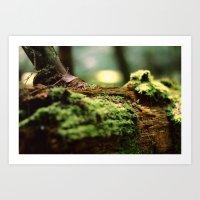 moss Art Prints featuring Moss by Anna Bailey